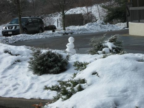 snowperson in West Virginia