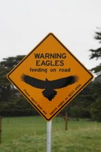 Road sign #3