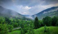 summer in the Carpathians