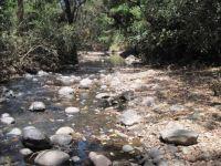 Kenya Highlands River