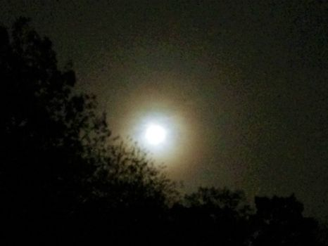 Full moon, snow's coming halo--challenging