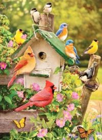SUMMER BIRD HOUSE