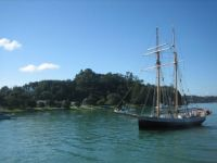 Could there be pirates in New Zealand?