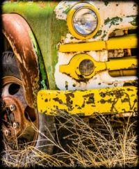 Derelict_School_Bus_RKH-1135