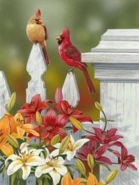 'Lilies And Cardinals' by William Vanderdasson