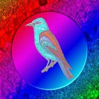 Stained Glass Bird 14