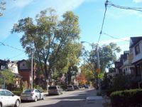 Old city street off the Danfforth/Toronto ON.