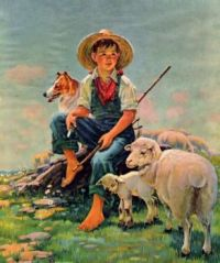 boy-and-dog-tending-the-sheep