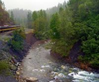 Alaskan stream from a train