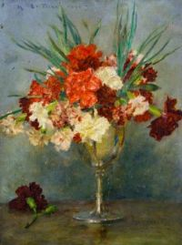 Carnations - a study