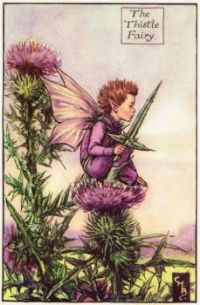 The Thistle Fairy (mini)