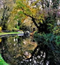 A cruise along the Staffordshire and Worcestershire Canal, Stourport to Great Haywood Junction (709)