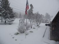 May 9, 2020 - Everything is white again!