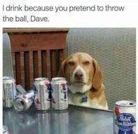 Damn you, Dave