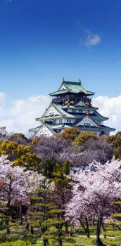 Beautiful Japanese Temple