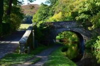 Bridge48W-LlangolanCanal