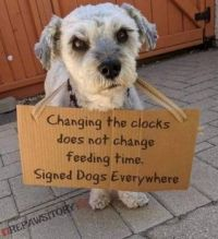 The REAL reason we need to do away with time change laws...