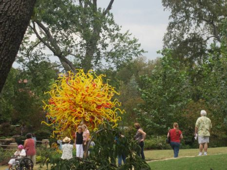 "Dale Chihuly blown glass 14 ft diameter ""The Sun"" Dallas Arboretum"