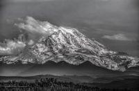 Mt. Rainier by Adam Pritchard Photography