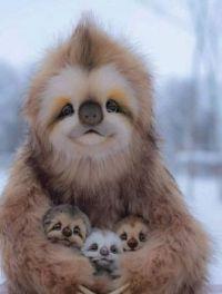 Sloth Mumma and babies :-)