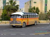 Old Leyland Malta Bus