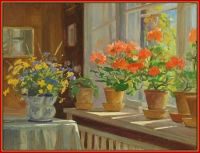 Interior at Knudsminde, Window Sill with Geraniums in Pots ~ 1948