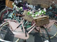 Bicycles, the summer kind