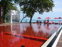 San Alfonso del Mar Resort Pool (Difficult)