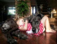 doggirl-580x453