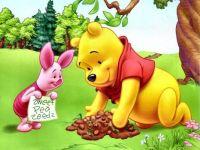 Winnie the Pooh 35