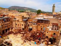 Tannery Fez-Morocco