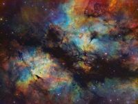 """""""IC 1318: The Butterfly Nebula in Gas and Dust"""""""