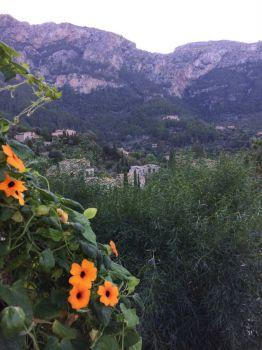 Deia Majorca