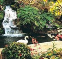 Theme ~ Waterfall - Hilton Hawaii Village