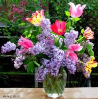 Lilacs and Tulips.  Easier