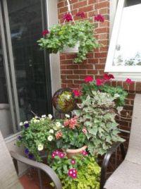 Deck Garden Corner July 2015