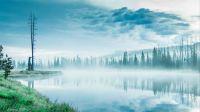 Yellowstone Area