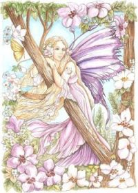 fairy-in-the-flowers-           morgan-fitzsimons