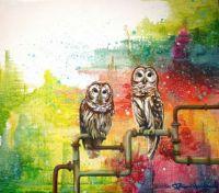 Constructing Owls