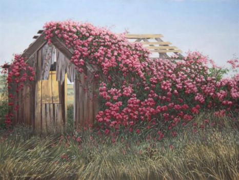 Rose Covered Barn