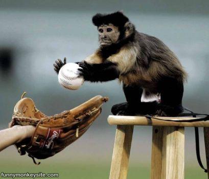 Bonga Bonga Baseball Umpire....PLAY BALL!!!!