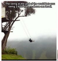 Just a swing'in