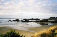Oregon shores
