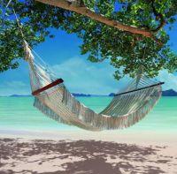 Hammock on a Beach in Thailand