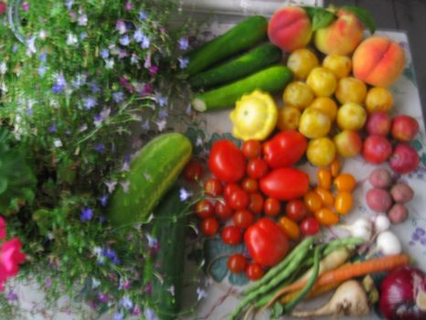 Nature's bounty, August 13