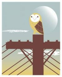 Barn-Owl by Jason Dryg