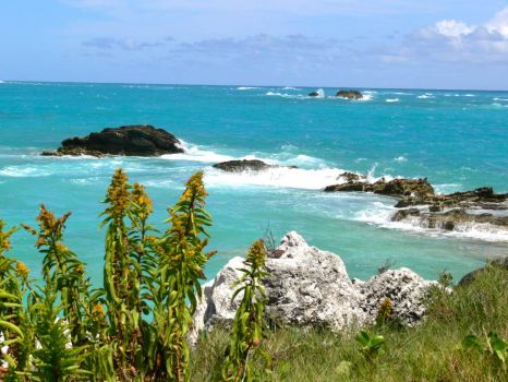 A glance from old Bermuda yesterday.