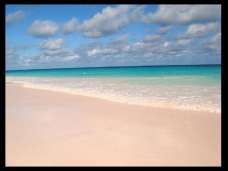 Pink Sand Beach, Carribeans