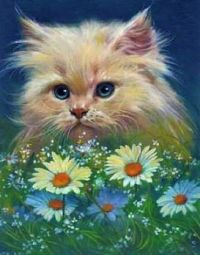 """Kitten Caboodle Series - """"Fresh As A Daisy"""""""
