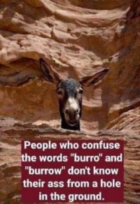 People who confuse the words